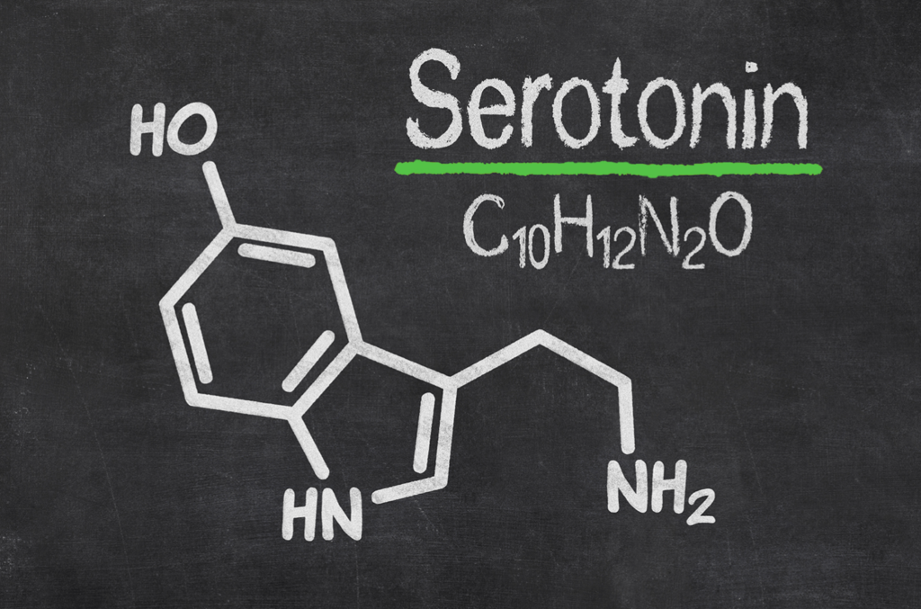 blackboard sketch of serotonin molecule